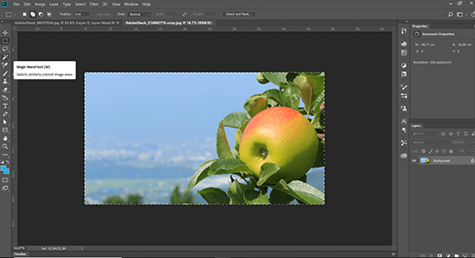 Using the Photoshop Magic Wand Tool - click the cursor anywhere within the area